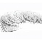 5) Τουρτό-δισκοι Πλαστικοί (14)